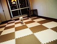 犬のようちえん&ペットホテルtriangle2号店